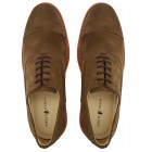 Sapato Masculino Oxford Avila Camurça Ferrugem